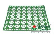 屋顶花园排水板蓄排415基本型