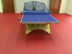 乒乓球室塑胶地板价格