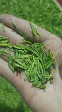 批發嫩芽綠茶恩施富硒茶葉