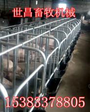猪场限位栏设备母猪料槽