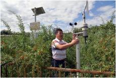 小型便携式自动气象站校园农业气候环境仪