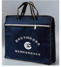 厂家供应广西经济普查手提袋文件袋资料袋