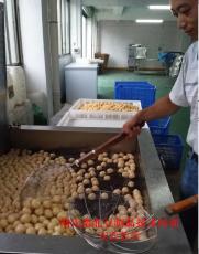 豆制品技术豆腐技术培训