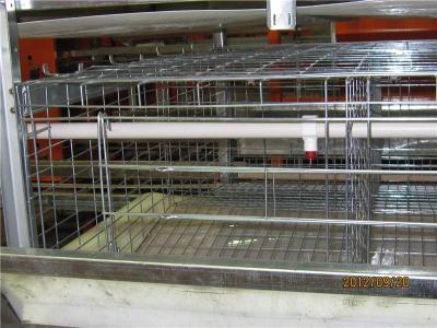自然养殖 品牌鸡笼厂家养殖设备最新价格