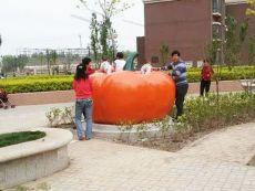 供应张家口公园仿真蔬菜茄子南瓜西红柿雕塑