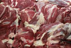 福建批發冷凍兔肉