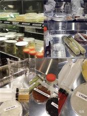 奶茶店10大品牌广州市倾城餐饮有限公司加
