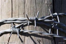 双股铁蒺藜 可定制正拧刺丝网 反拧刺铁丝