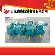 YBK2-160M2-2防爆電機生產廠家哪家強