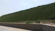 高速铁路绿化施工 喷混植草河南景绣放心之