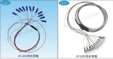 12芯帶狀光纖跳線
