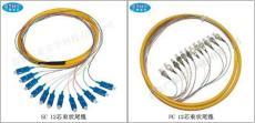 12芯束状尾纤