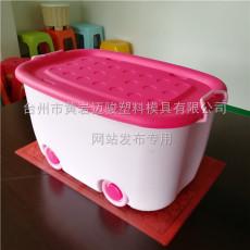 臺州黃巖模具公司專業定做儲物收納箱開模制