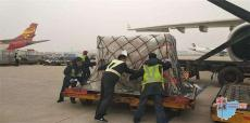 温州永强机场国内空运航空急件3小时到