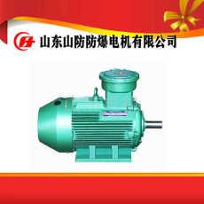 YBK2-200L1-6防爆電機產品規格安裝圖紙