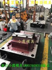 台州胶框模具