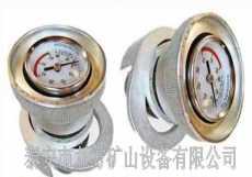 滁州市单体支柱测压仪DZ-60