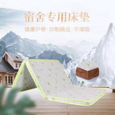 乳胶枕头厂家直销支持定做棕轩床垫