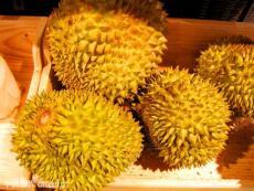 马来西亚榴莲进口清关流程