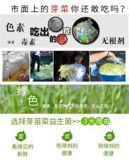 芽苗菜用益生菌营养液有什么好处