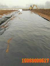 平頂山養黃鱔泥鰍用的防水地膜黑膠布廠家
