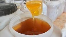 徽蜂堂-专业蜂蜜加工厂家