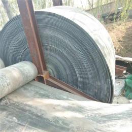 鋪地輸送帶 耐磨耐酸堿電氣絕緣鋼絲尼龍帶