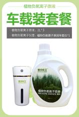 负氧离子空气清新剂中山除甲醛