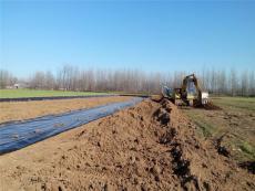 河南種藕用的防水橡膠布和塑料地膜哪里有賣