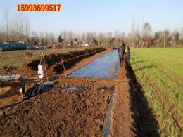 温县沁阳莲藕池防水用什么塑料膜
