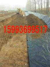 鹿邑哪里卖藕池塑料膜郸城商水优质种藕膜