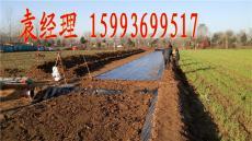 廠家直供鞏義泥鰍池塑料布 新密泥鰍池地膜