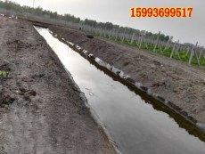 哪家公司做水池坑塘池塘防漏水工程材料