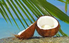 进口泰国椰汁报关操作步骤清关单证