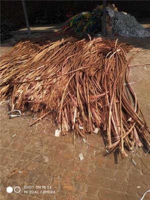 济南电缆回收实物估价格本月份报价