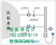 FRD-803智能锅炉汽包液位计