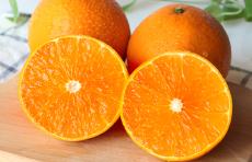 爱媛38柑橘优质果冻橙一件代发