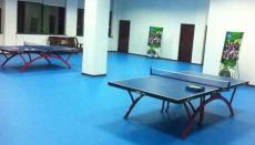 山東室內乒乓球地板