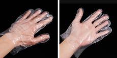 全新料聚乙烯一次性塑料手套批發價格