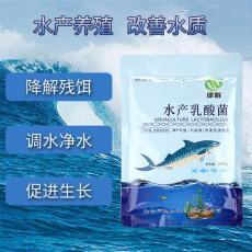 水产乳酸菌 水质改良剂 调节肠道健康