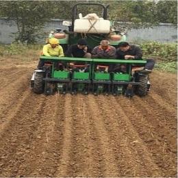 专业生产桑树银树茶树种植机