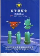 誠信經營國標產品五星品質BQS礦用潛水泵
