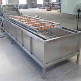 气泡式多功能清洗机 4000型菠菜清洗机