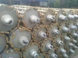 回收陶瓷绝缘子U70BP/146D