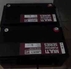 12V127AH大力神LIBERTY蓄电池MPS12-127