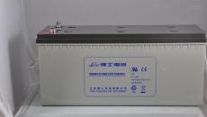 6V100AH理士LEOCH蓄电池DJM6100SZ