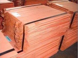供应铜含量99.95电解铜 电解铜行情价格