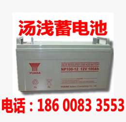 汤浅65AH蓄电池12V ups蓄电池12V65AH