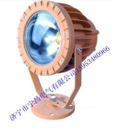 KHT96防爆免维护LED投光灯(IIC)山东销售