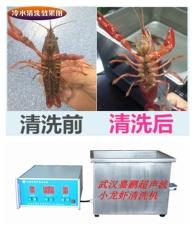 武漢嘉鵬生產超聲波小龍蝦清洗機設備